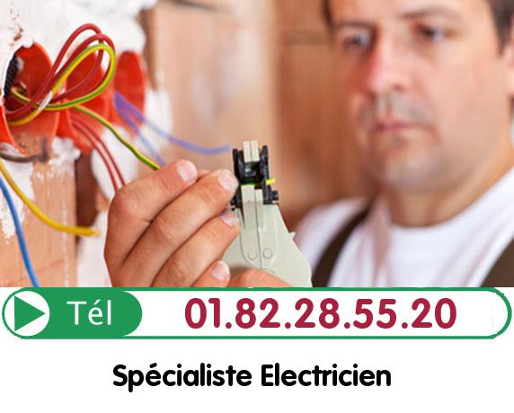 Electricien Longnes 78980